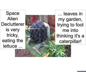 passsion-ata-caterpillar