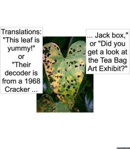 hole-coding-on-leaf-translations