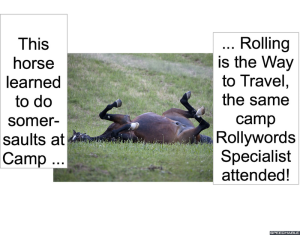 horse-somersaulting-camp