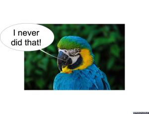 nod-pmurts-parrot-i-never-did-that