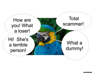 parrot-what-a-dummy