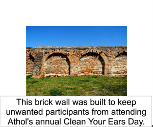 brick-wall-ears