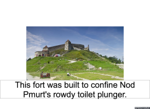 fort-toilet-plunger