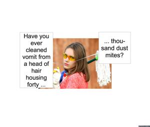 dust-mite-maintenance-vomit