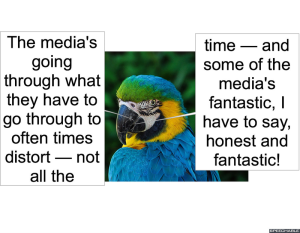 nod-pmurts-parrot-media-speech