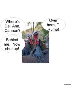 turkeys-t-rump