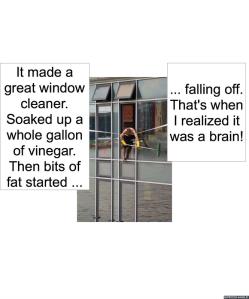 window-cleaner-rumps-brain